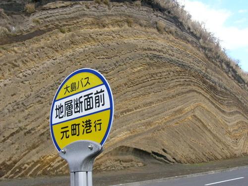 アルバム: 伊豆大島 断層 ベームクーヘン